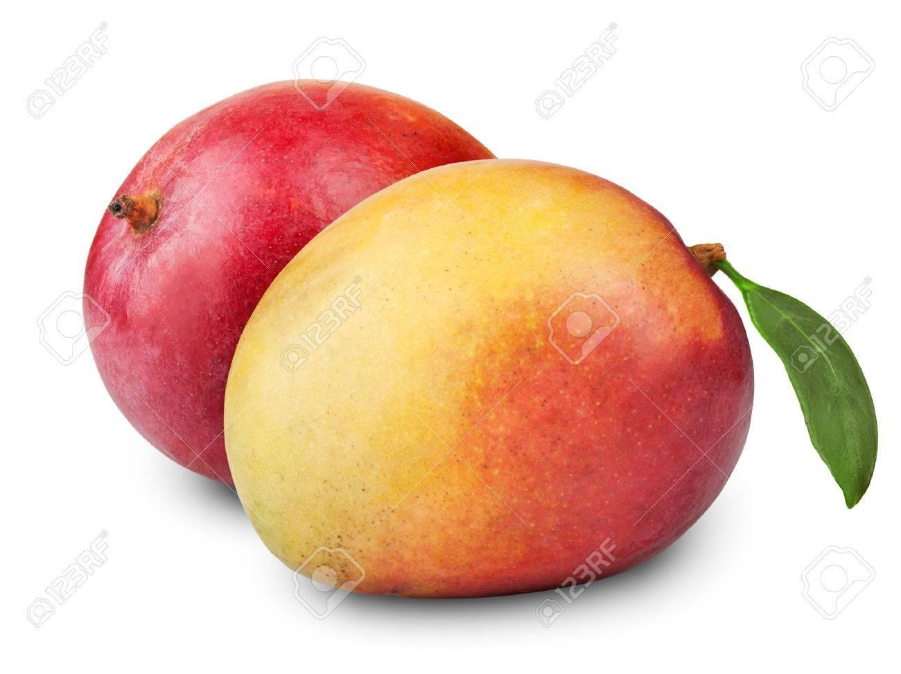 mango fruit on white background - 16904853