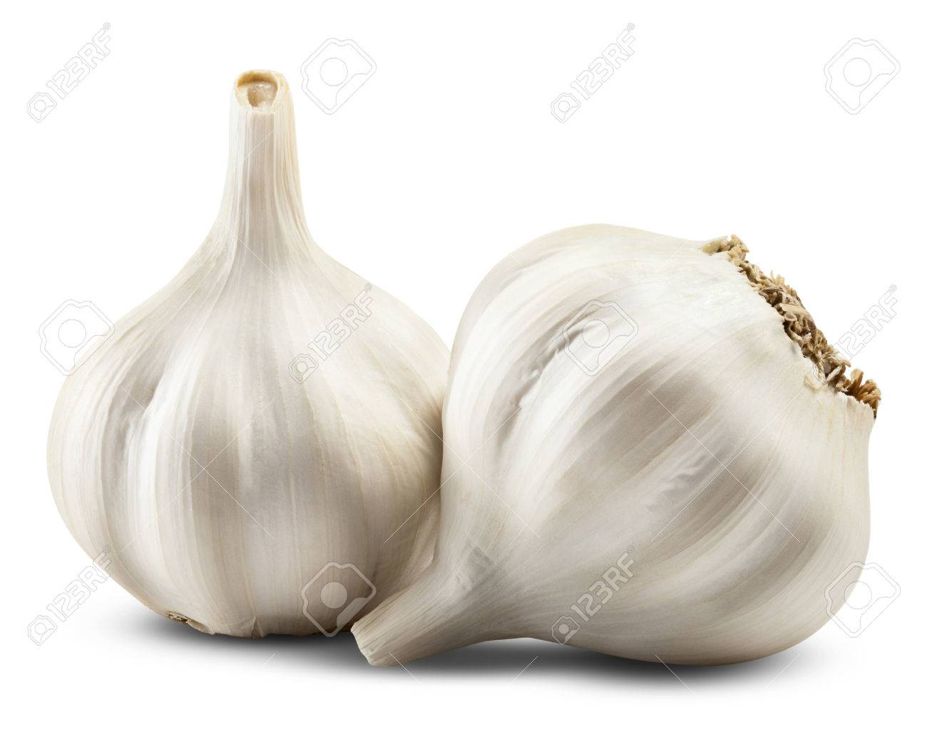 garlic isolated on white background. Clipping Path - 33452114