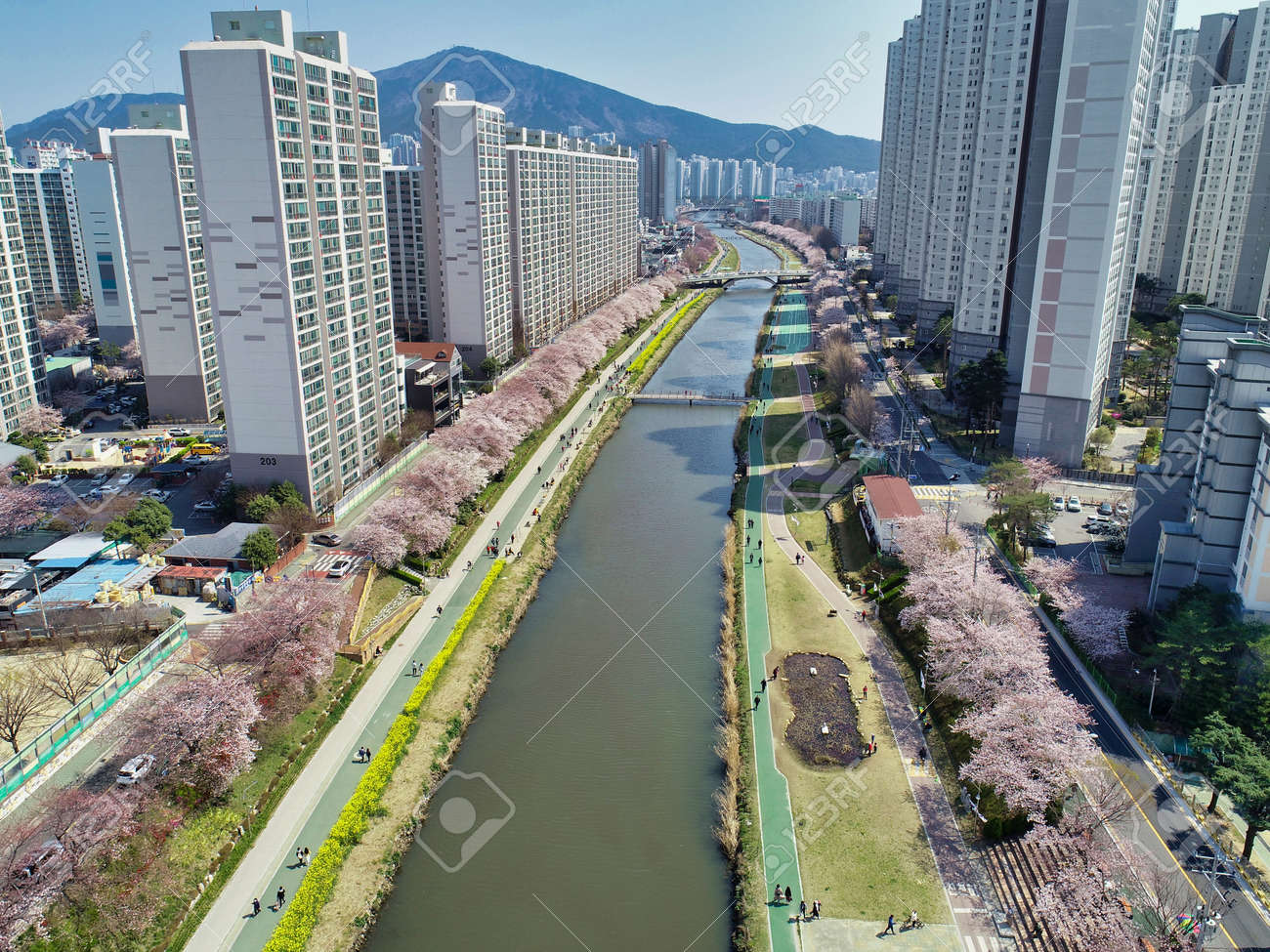 Spring of Oncheoncheon Citizens Park, Busan, South Korea, Asia - 162844828