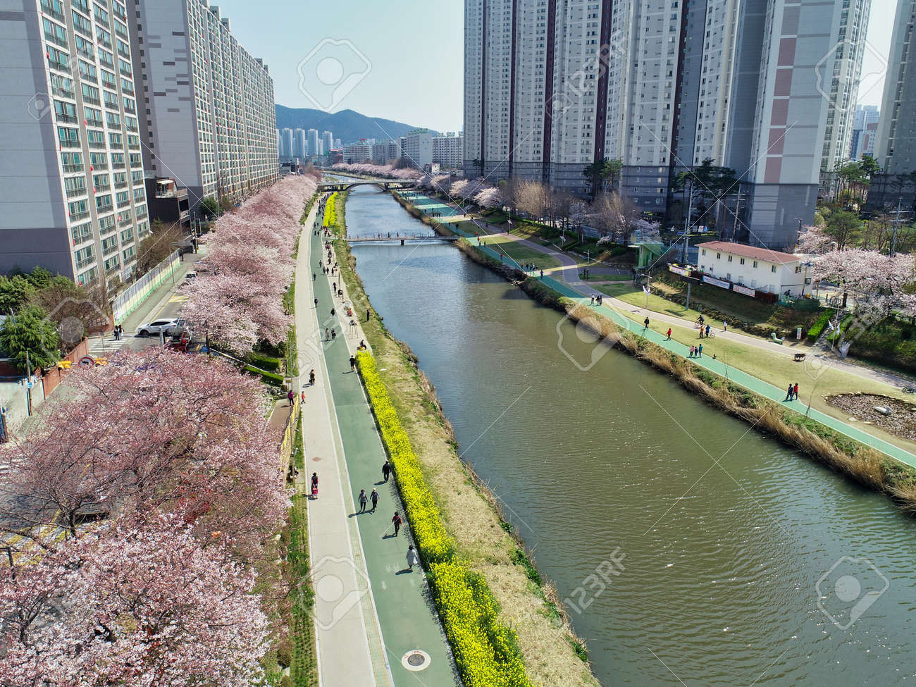 Spring of Oncheoncheon Citizens Park, Busan, South Korea, Asia - 162844830