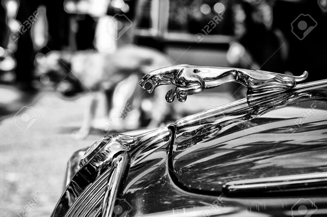 The Symbol Car Jaguar Black And White Exhibition 125 Stock