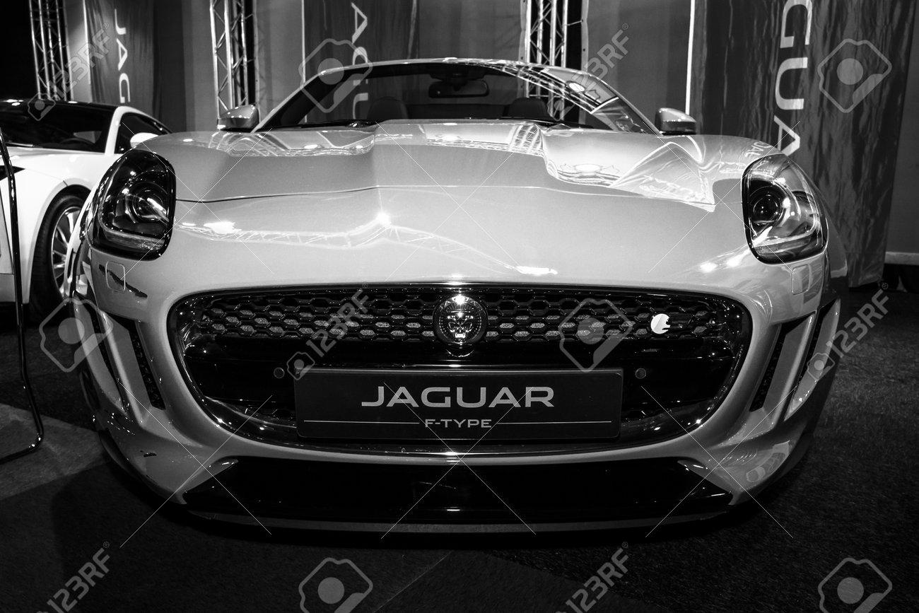 Maastricht Netherlands January 08 2015 Sports Car Jaguar