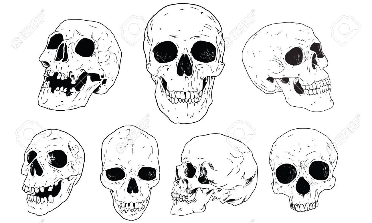 Set Skull - 25099890