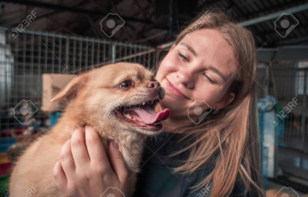 Close-up of female volunteer holds on hands dog in shelter. - 142934813