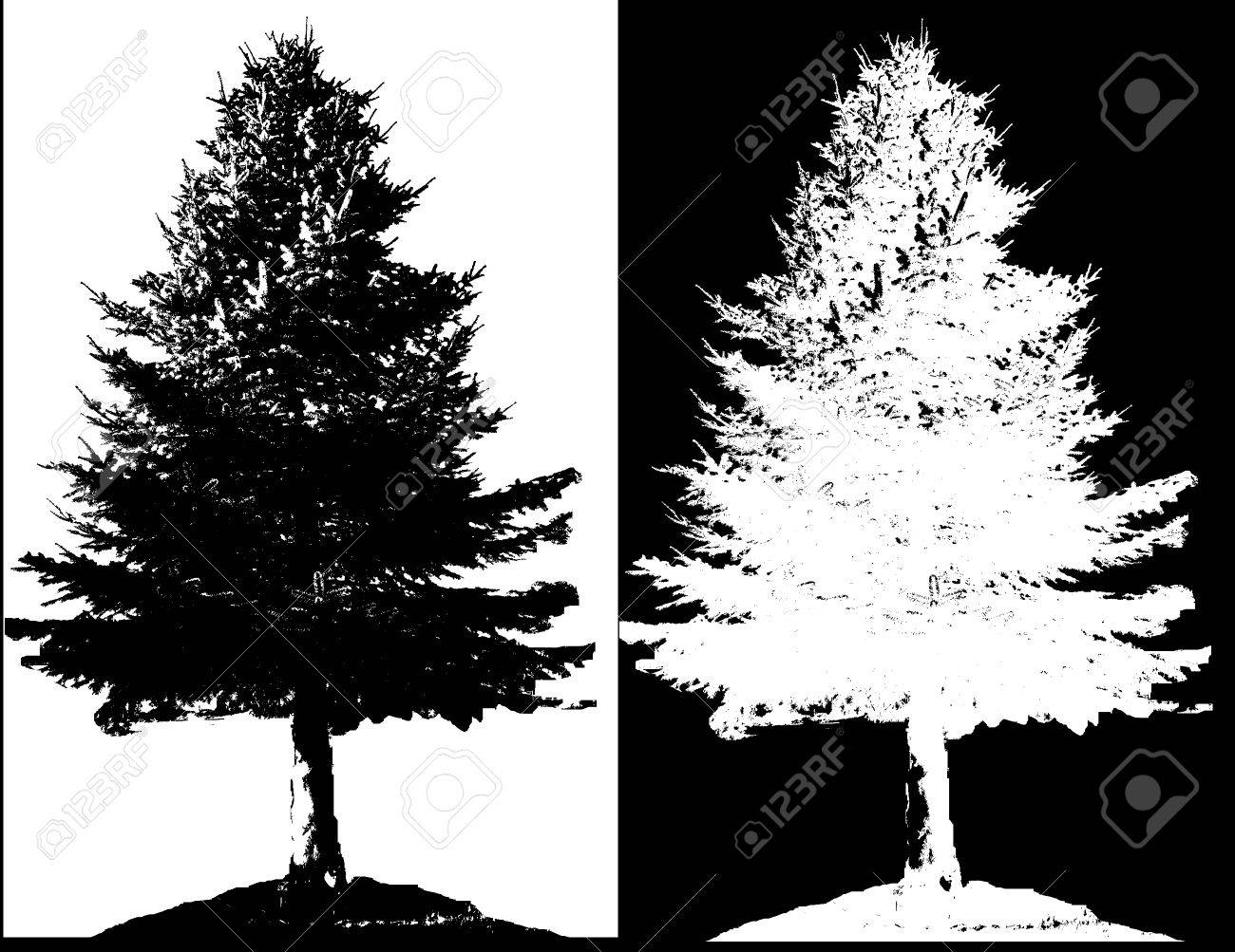 Illustration silhouettes of trees Stock Vector - 25025009