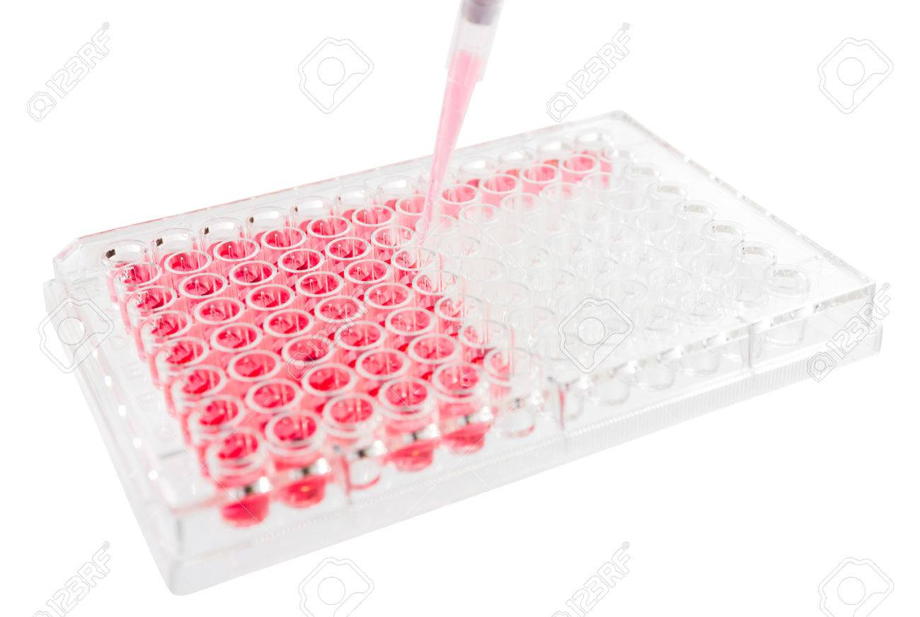 Image result for ELISA,test,Plates