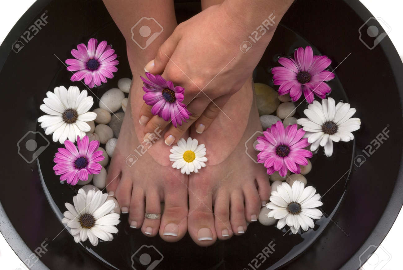 Beautiful pedicured feet and manicured hand with colorful spring daisies in a spa Stock Photo - 2633742