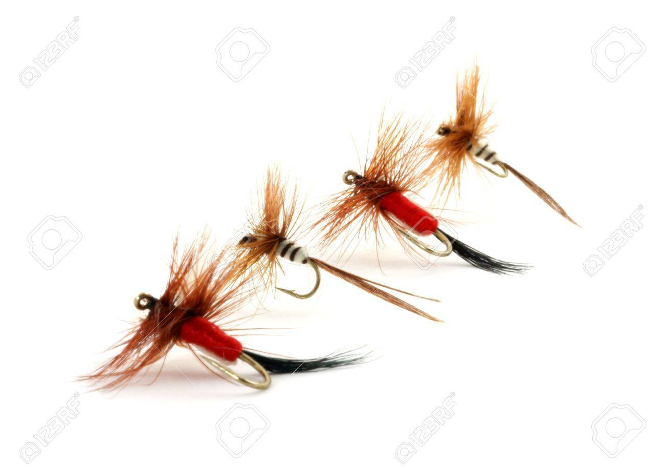 Four small trout flies Stock Photo - 4615332
