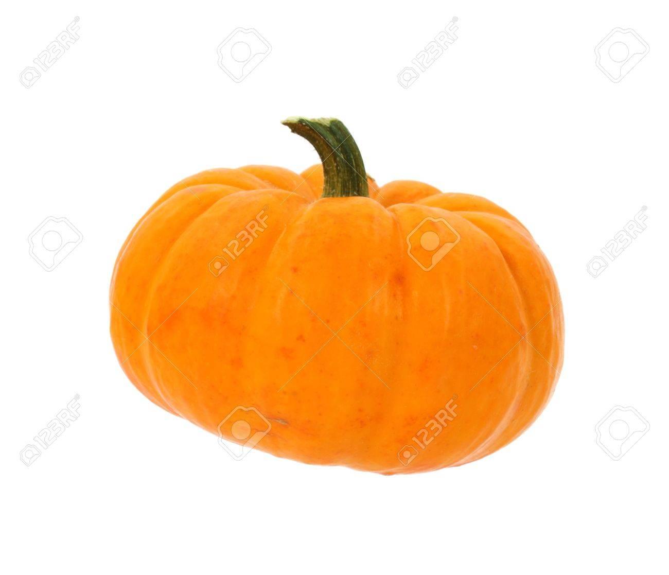 Tiny Pumpkin — Crafthubs