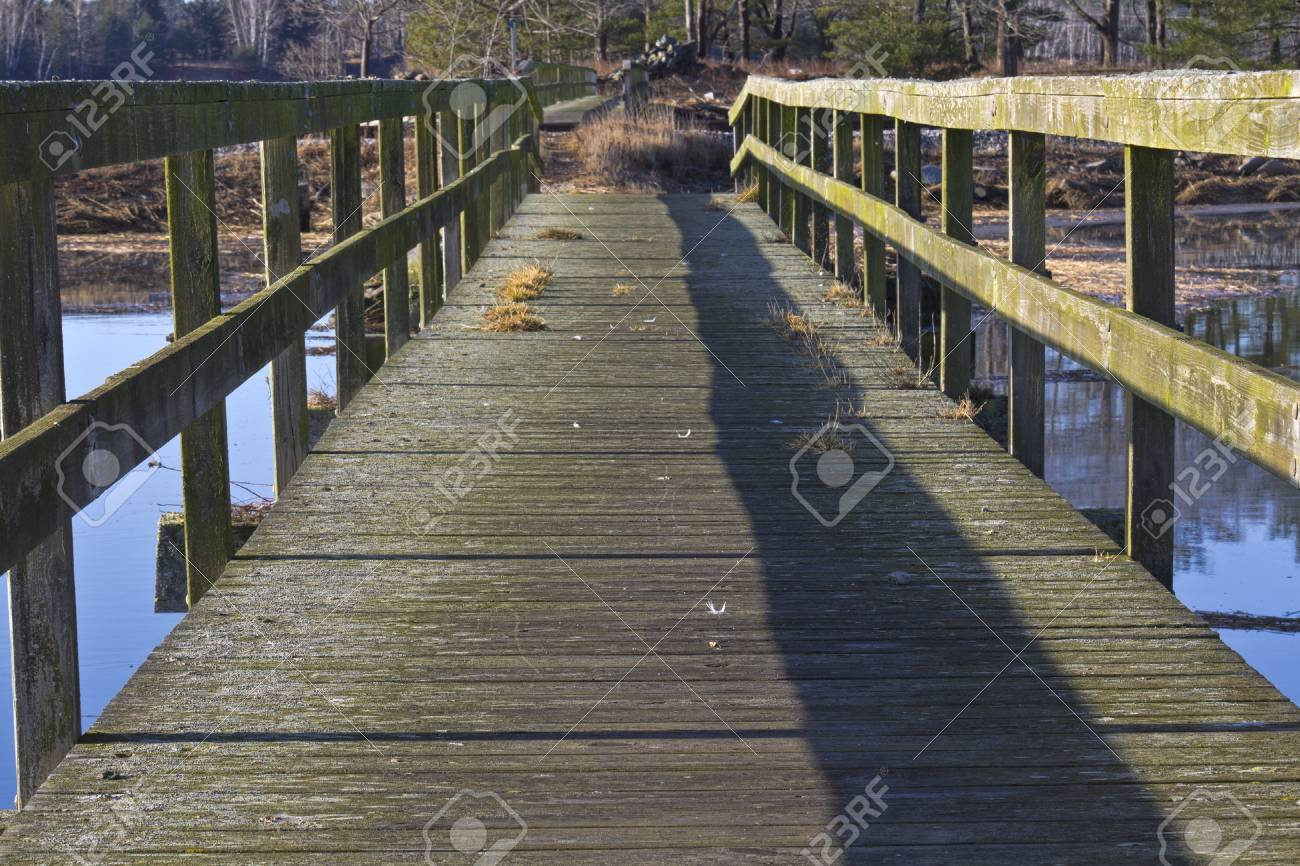 An old wooden footbridge over water leading into a forest Stock Photo - 13109799