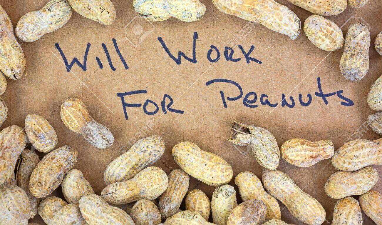 A piece of cardboard with will work for peanuts printed in bold lettering surrounded by dry roasted peanuts Stock Photo - 16333241