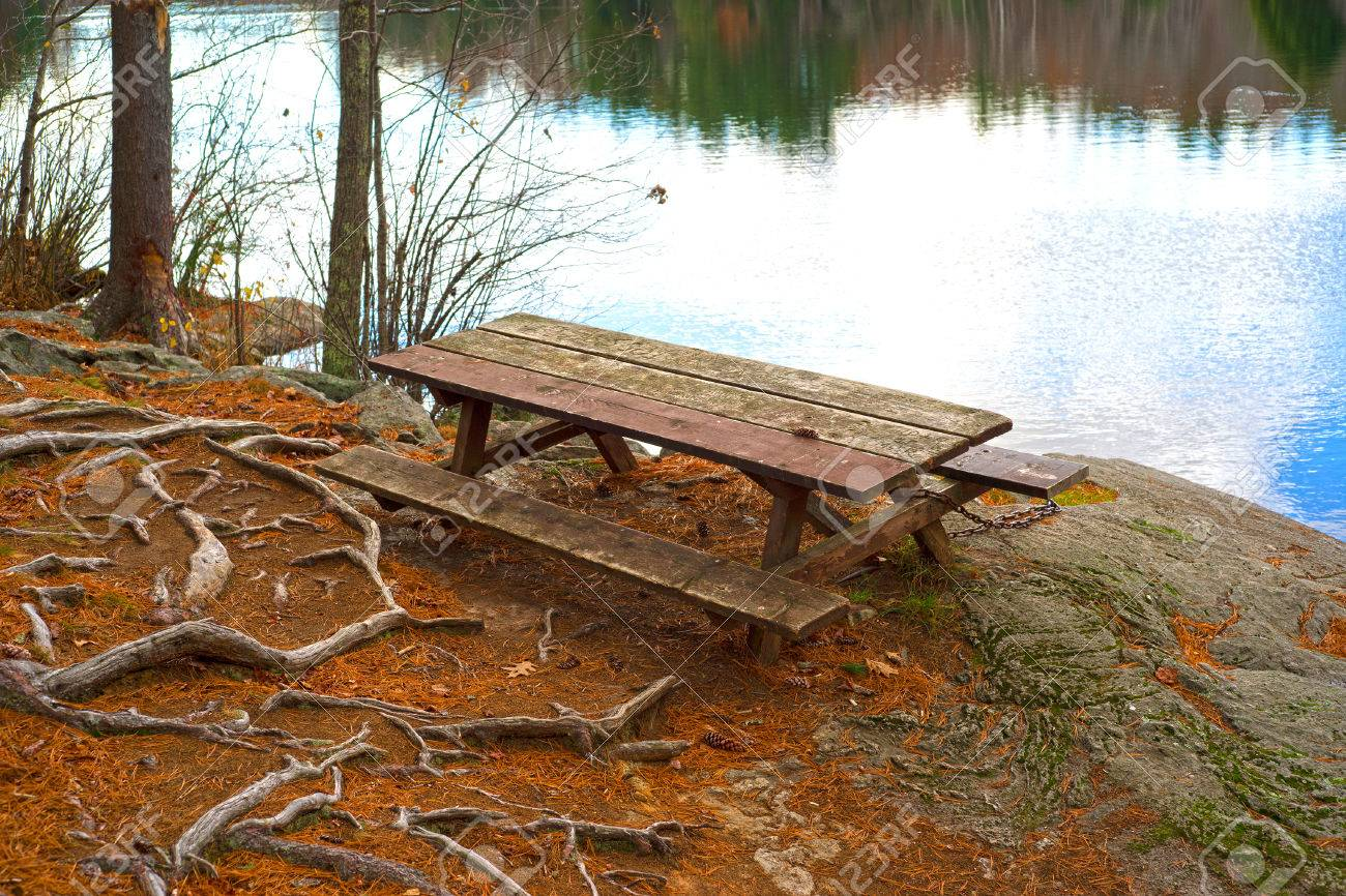 A Wood Picnic Table On A Rock Ledge Next To A Small Pond With Exposed Roots