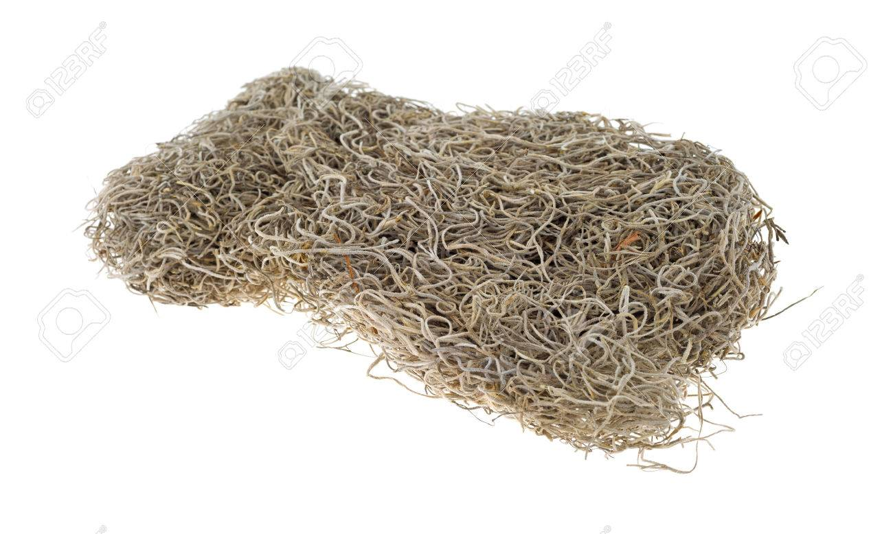 Spanish moss for crafts - A Small Block Of Dried Spanish Moss Used For Crafts On A White Background Stock