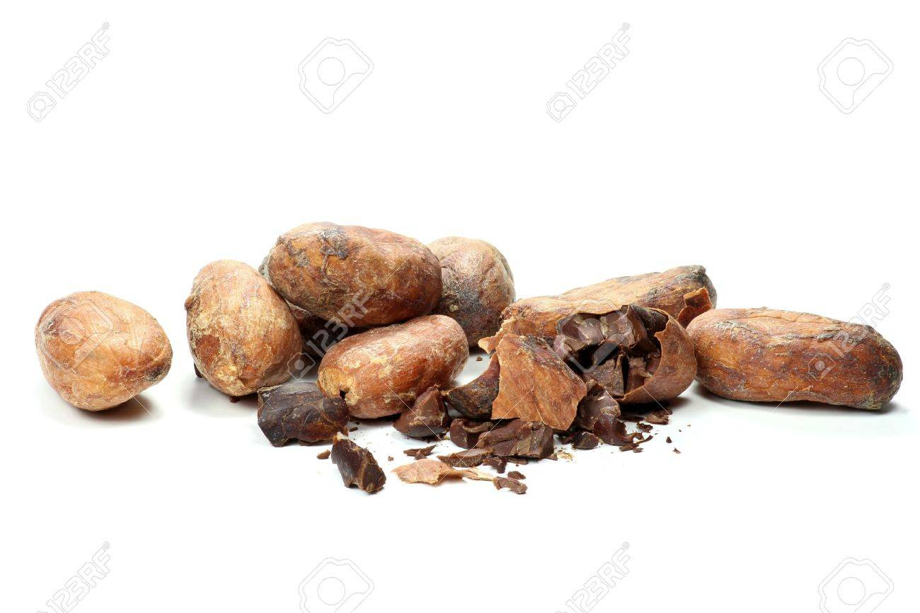 roasted cocoa beans isolated on white background - 51786627