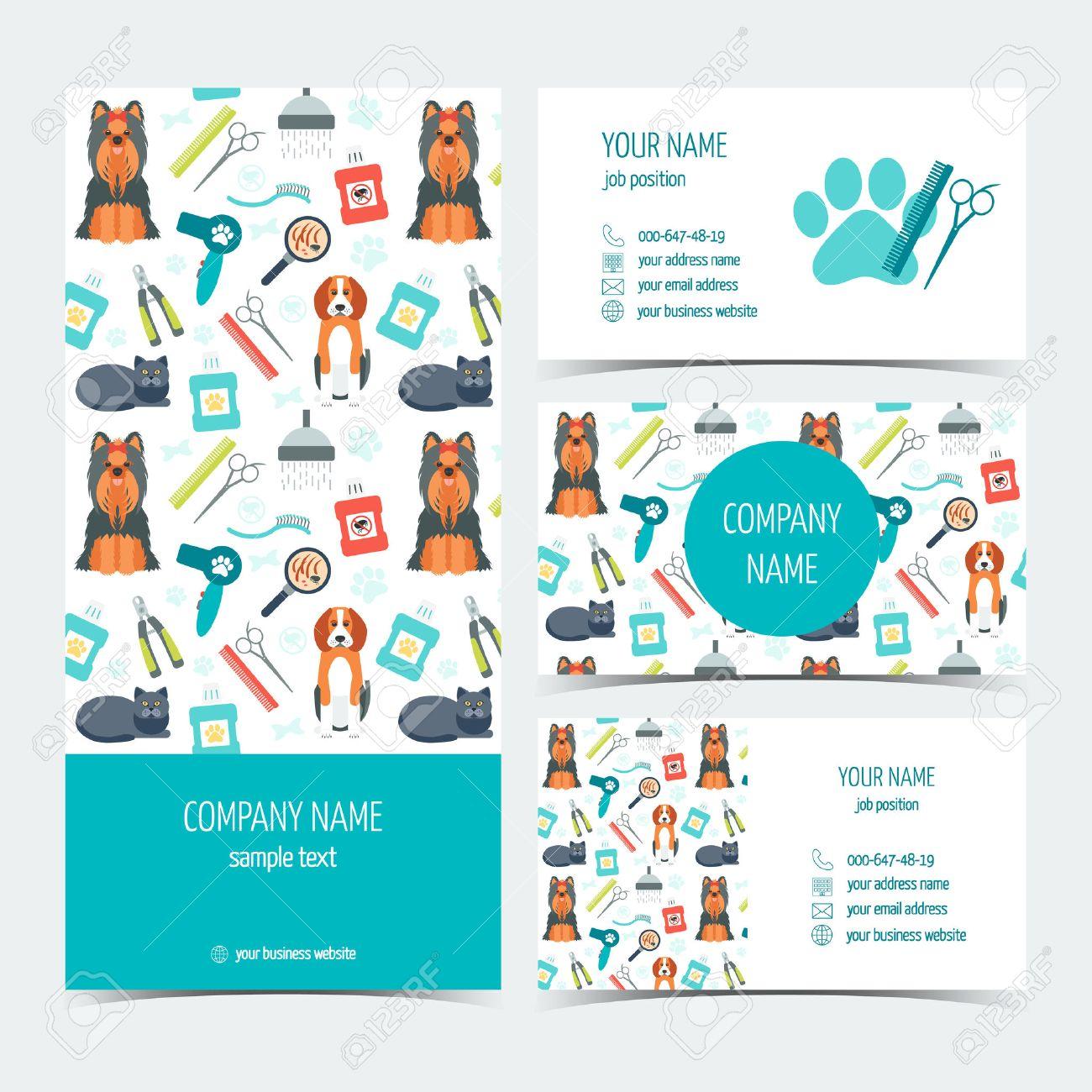 Ensemble De Dpliant Brochure Et Cartes Visite Pour Le