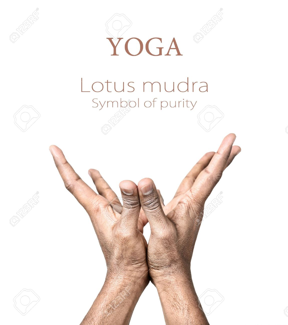 Hands In Lotus Mudra By Indian Man Isolated At White Background ...