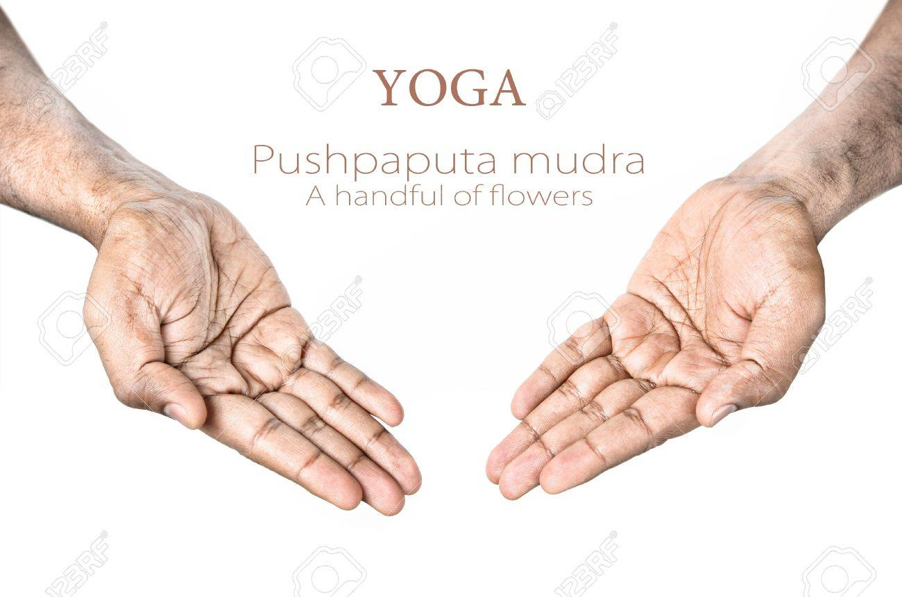 Hands in Pushpaputa mudra by Indian man isolated at white background. Free space for your text Stock Photo - 12173982