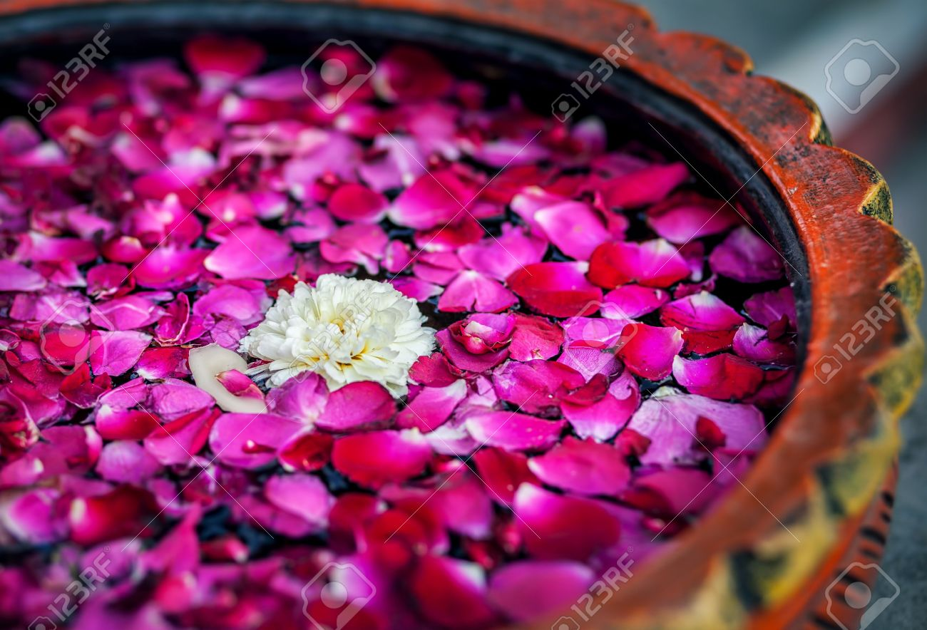 White flower with red rose petals in the bowl in SPA salon Stock Photo - 39230297