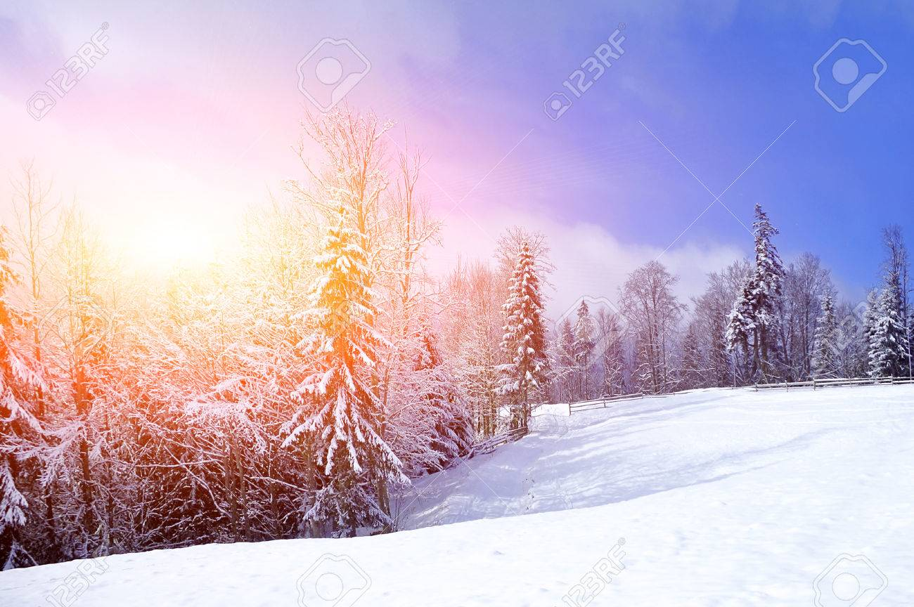 Beautiful winter landscape with snow covered trees Standard-Bild - 37413230