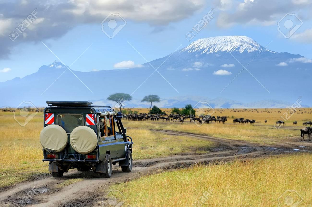 Safari game drive with the wildebeest, Masai mara reserve in Kenya, Africa Standard-Bild - 48166954