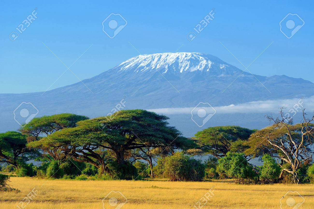 Snow on top of Mount Kilimanjaro in Amboseli Standard-Bild - 63583001