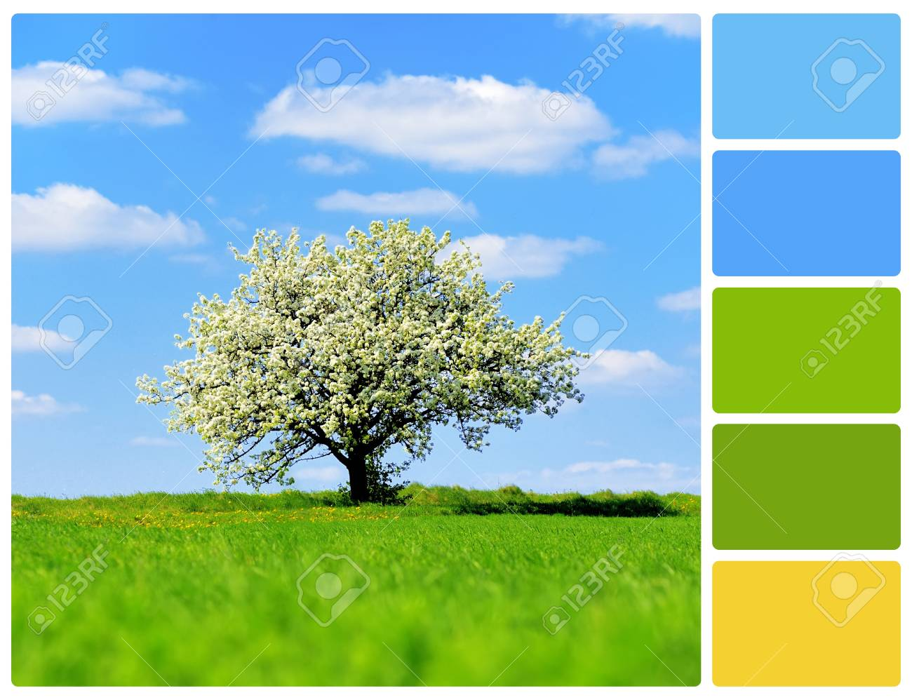 Landscape With Tree. Colour Palette With Complimentary Colour ...