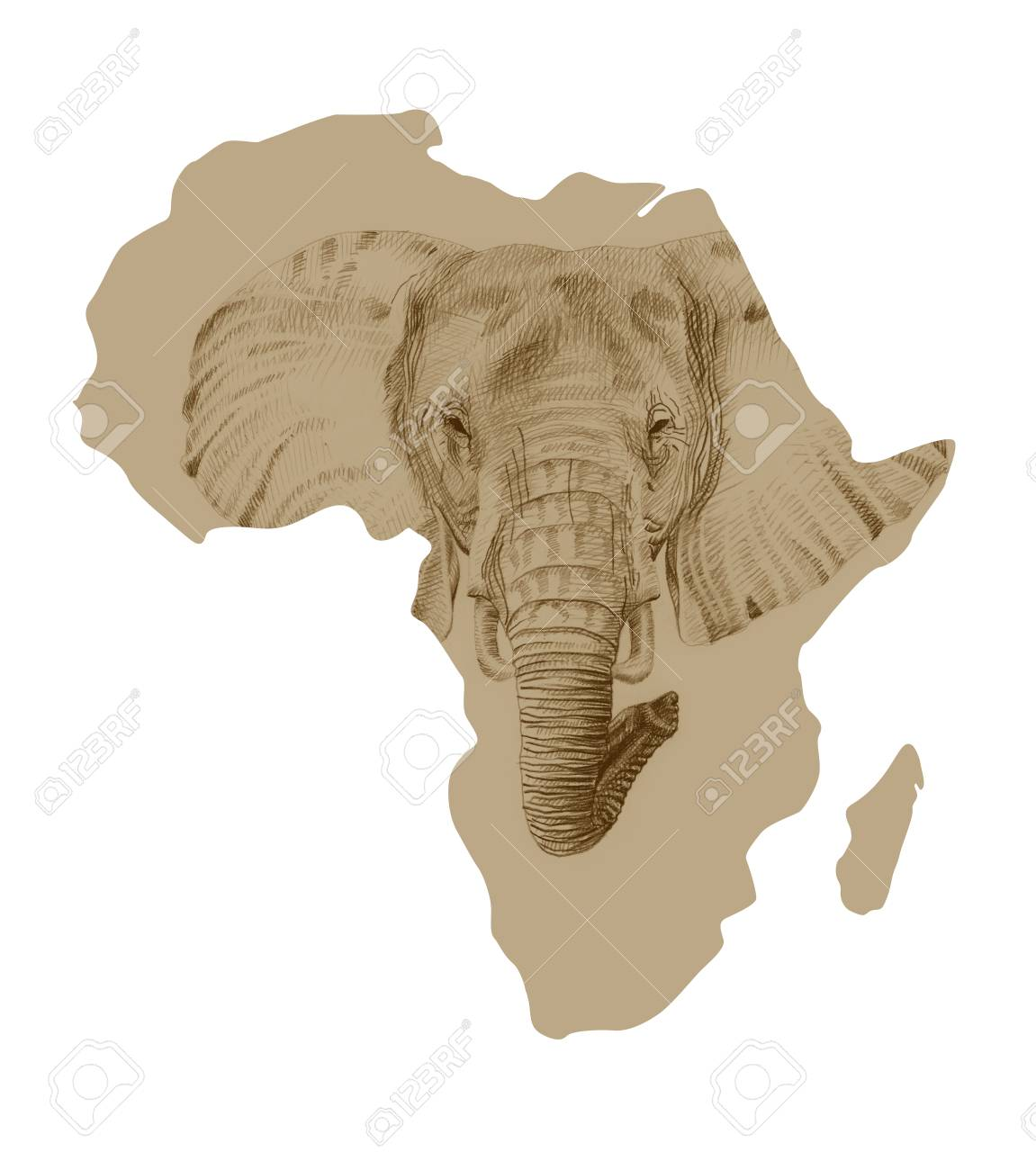 Map Of Africa With Pictures Of Drawn Elephant Stock Photo, Picture