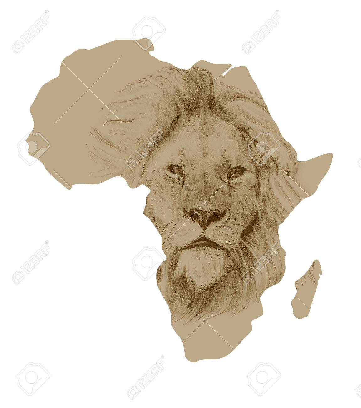 Map Of Africa With Pictures Of Drawn Lion Stock Photo, Picture And