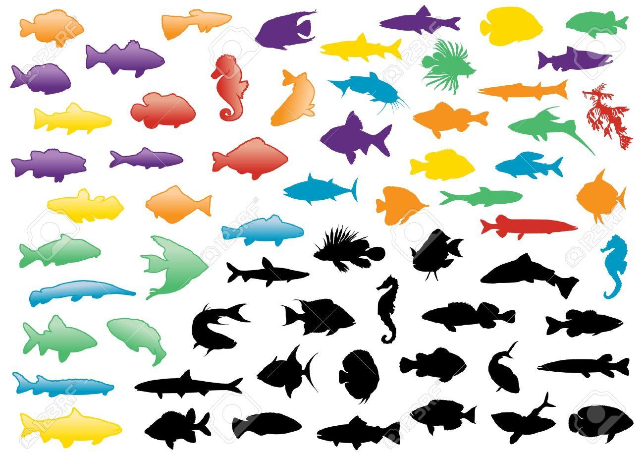 イラスト魚シルエットのセット。すべてのオブジェクトは隔離され