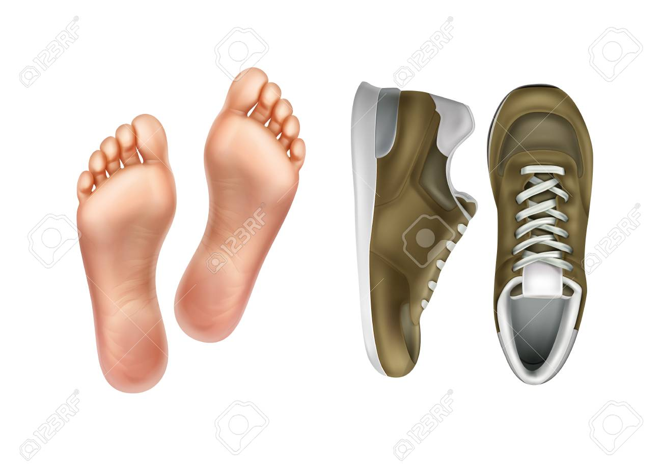 ed1b5a49a97 Vector illustration of left and right foot soles for footwear,..