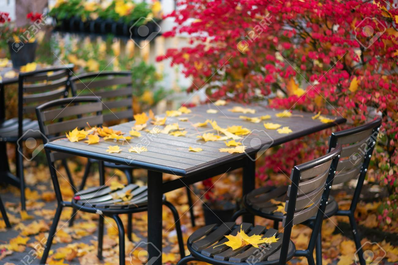 Picture Of Empty Autumn Cafe With Red And Yellow Leaves Stock Photo Picture And Royalty Free Image Image 109976556