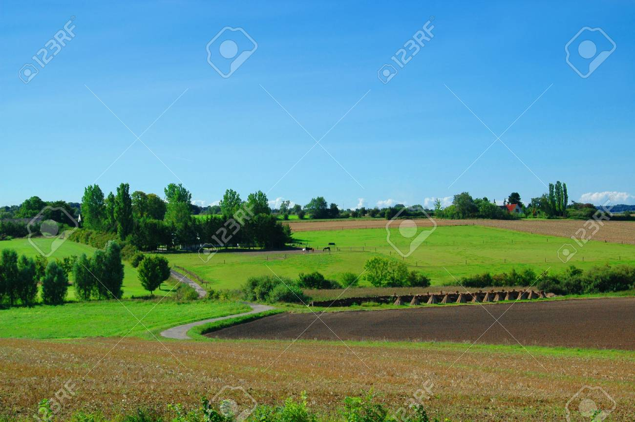 Idyllic farm landscape with blue sky, green fields and trees Stock Photo - 920931