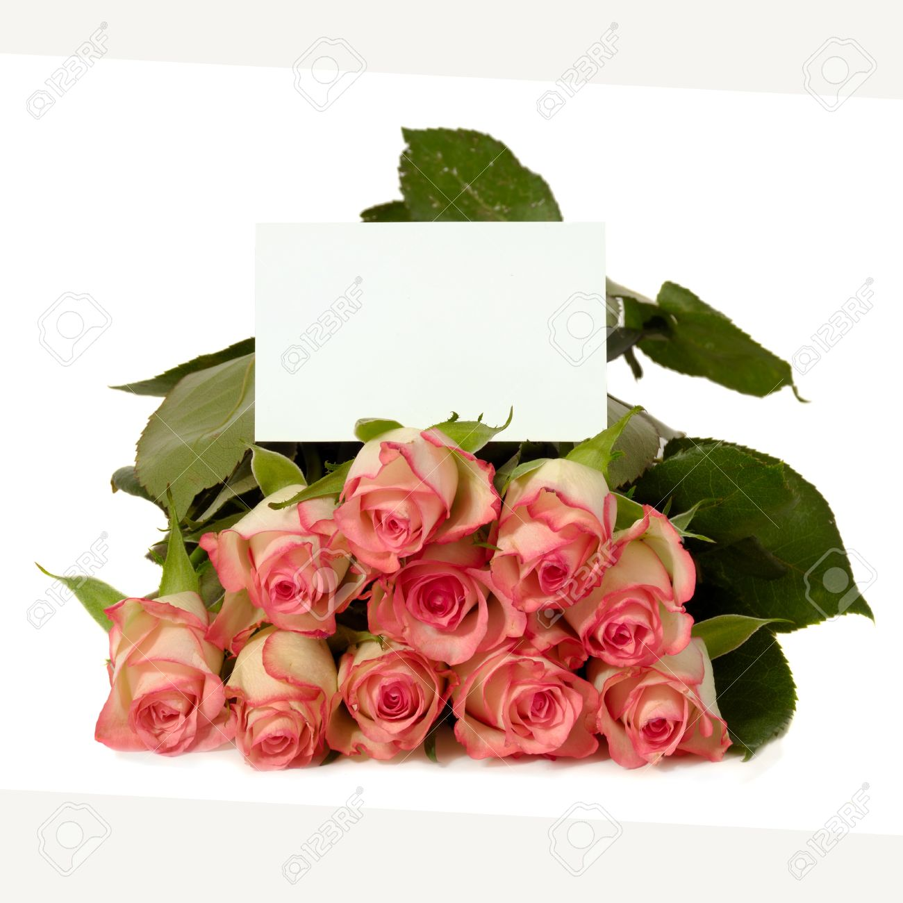 Bouquet of rose flowers with a blank gift card isolated on white bouquet of rose flowers with a blank gift card isolated on white background write negle Gallery