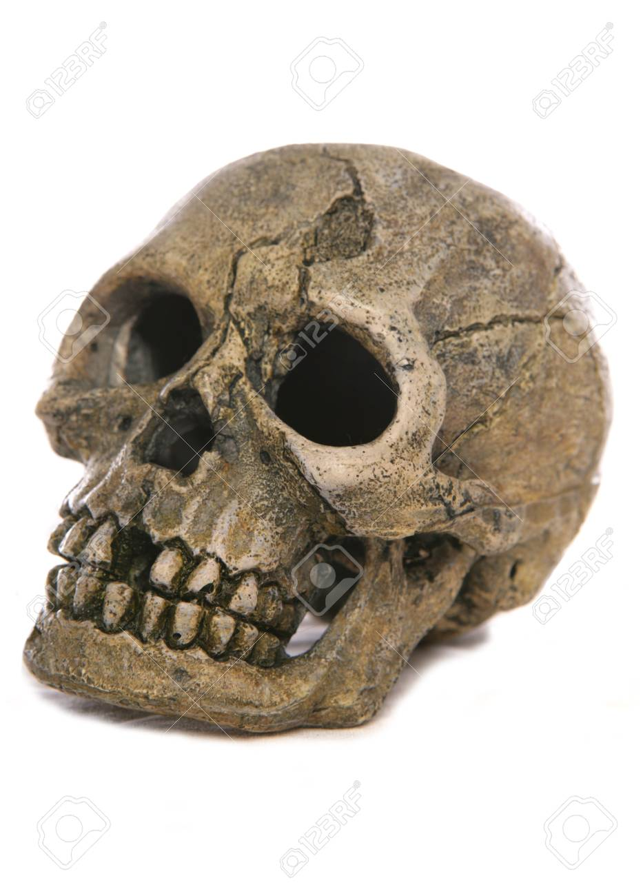 skull Halloween ornament