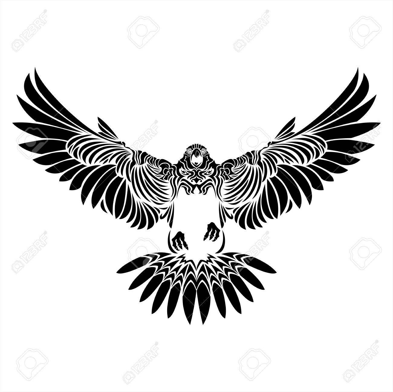 Tatuaje Aguila halcón, águila, halcón, negro, blanco, tatuaje, detalles, pájaro