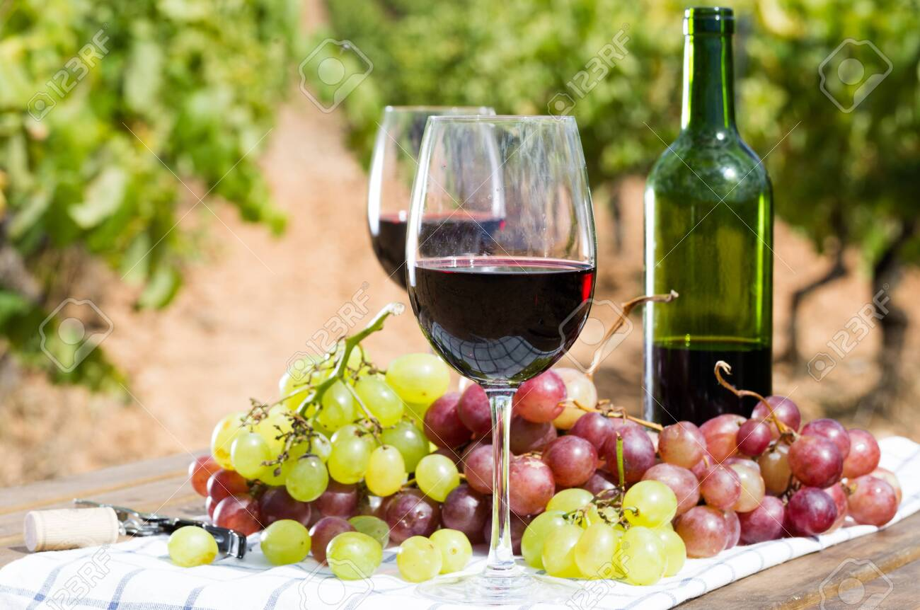 glass of red wine and ripe grapes on table in vineyard - 130353693