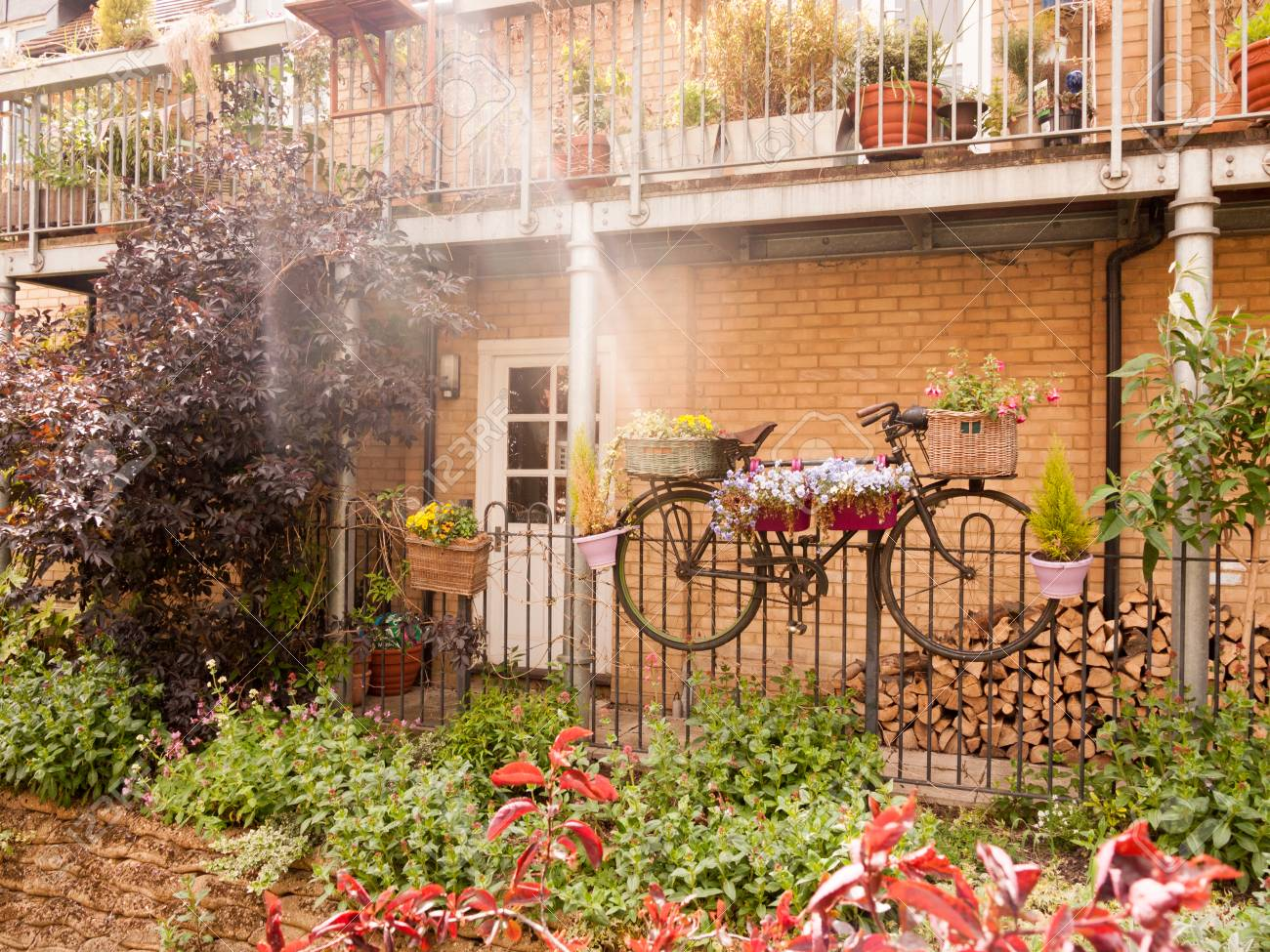 Beautiful Outside Garden Scene With A Bike With Flowers In Basket And Plant  Pots Summer Late