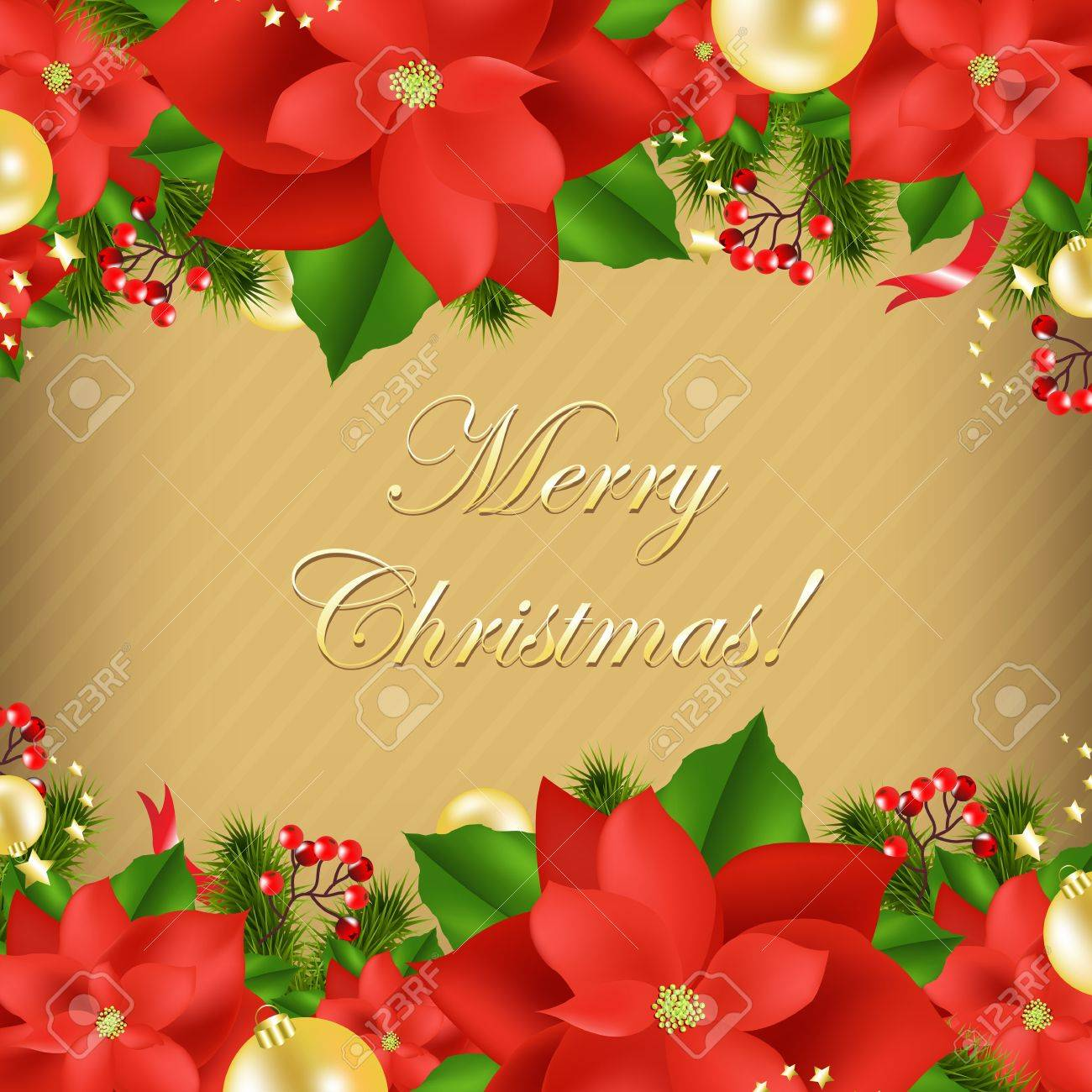 Xmas Card With Poinsettia, Vector Illustration Stock Vector - 11656648