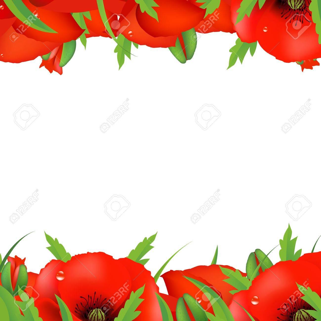 Red Poppy Border, Vector Illustration Stock Vector - 11976338