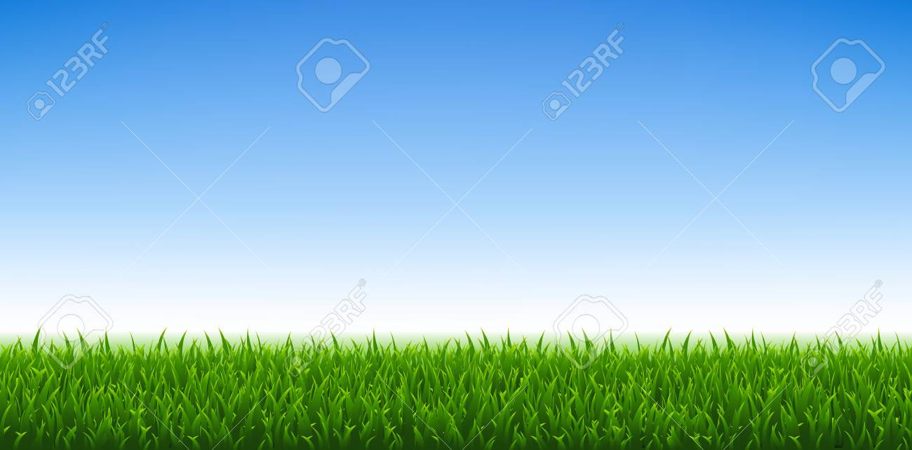 Green Grass And Blue Sky Background, Vector Illustration - 122355491