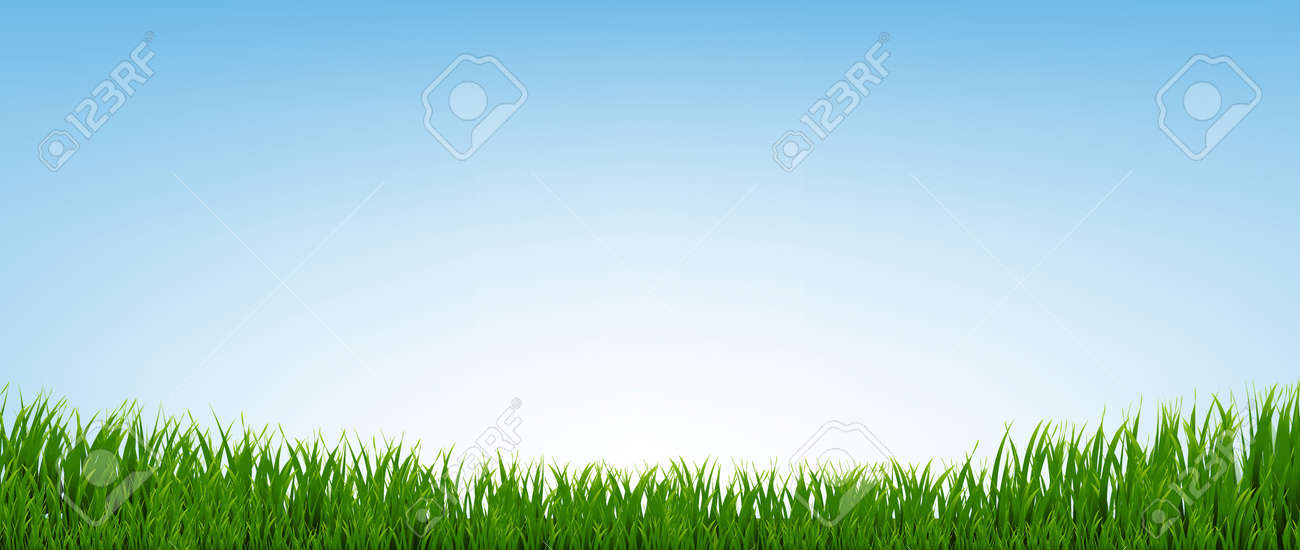 Green Grass Border With Blue Background - 153677899