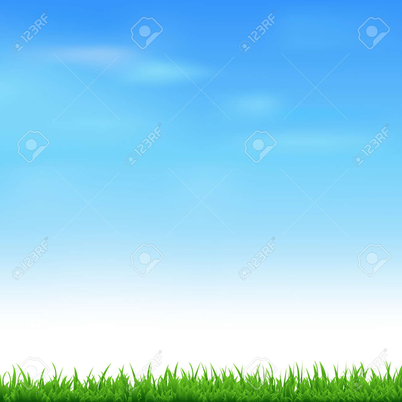 Landscape With Grass - 165527864