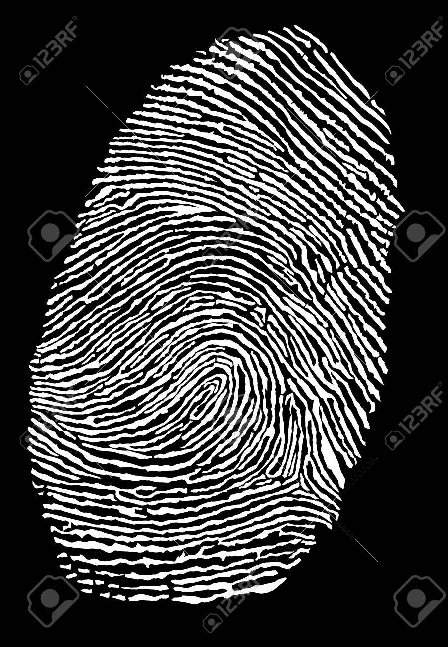 fingerprint Stock Vector - 4733328