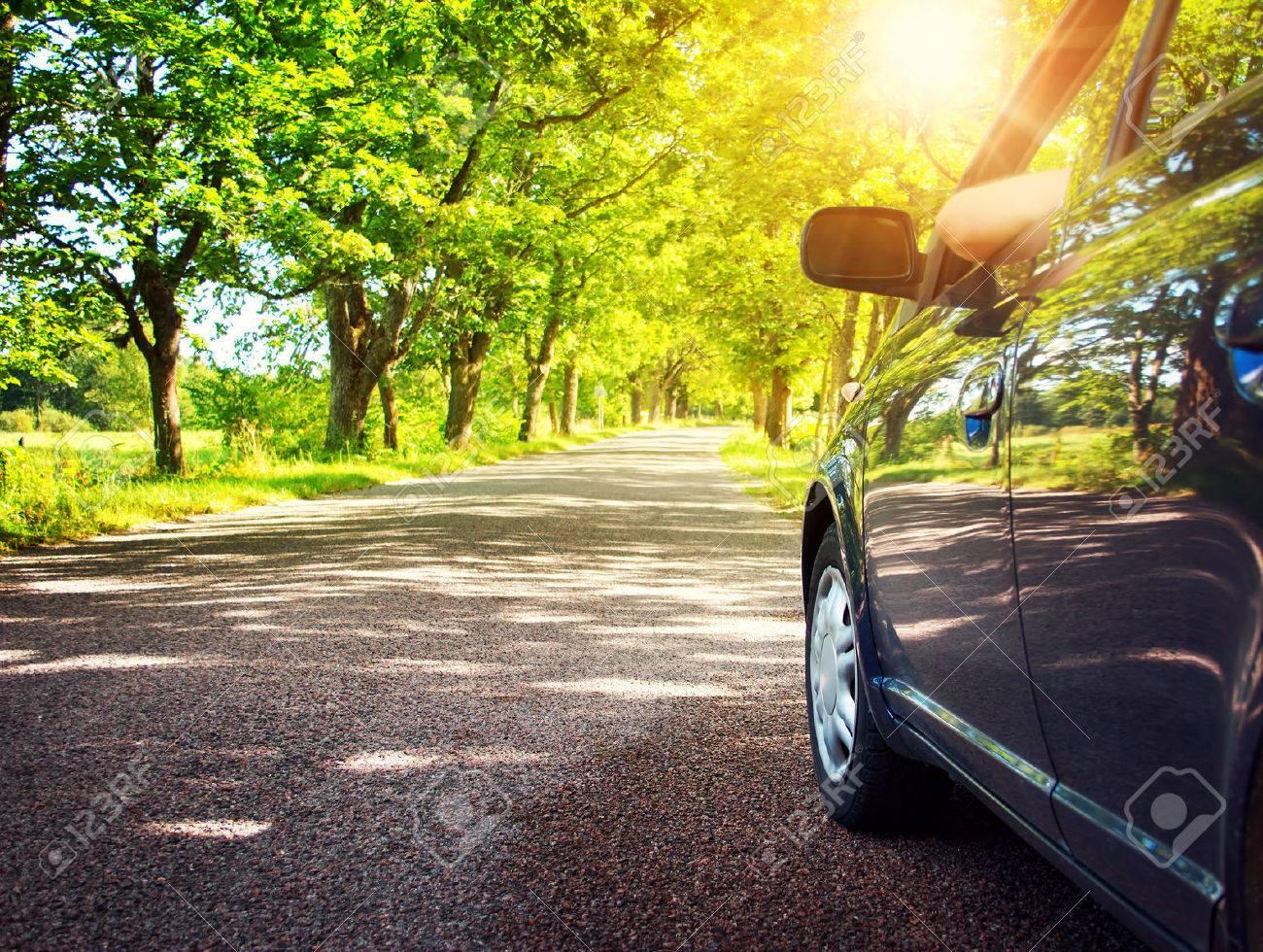 Car on asphalt road on summer day at park - 55118306