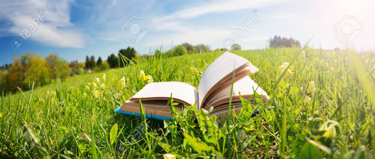 Open book in the grass on the field - 129789408