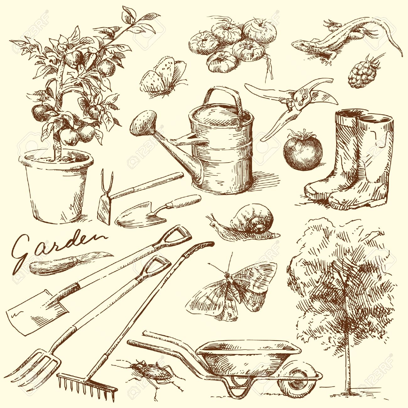 Vegetable garden kids drawing - Vegetable Garden Gardening Tools Illustration