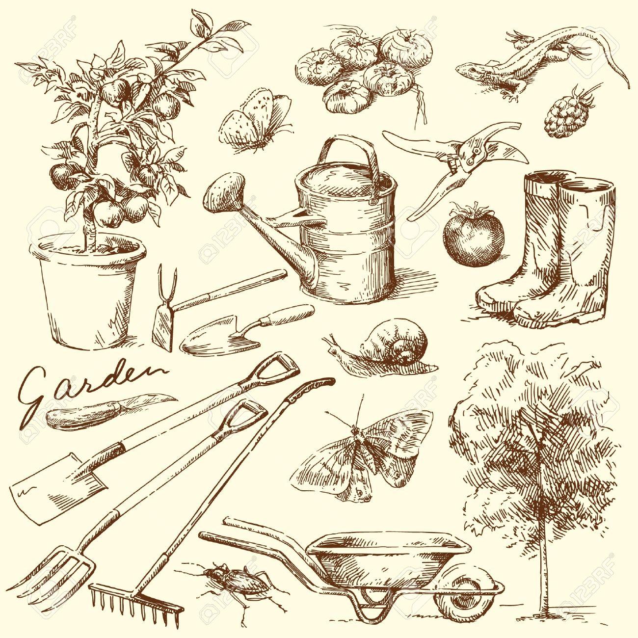 gardening tools Stock Vector - 13962143