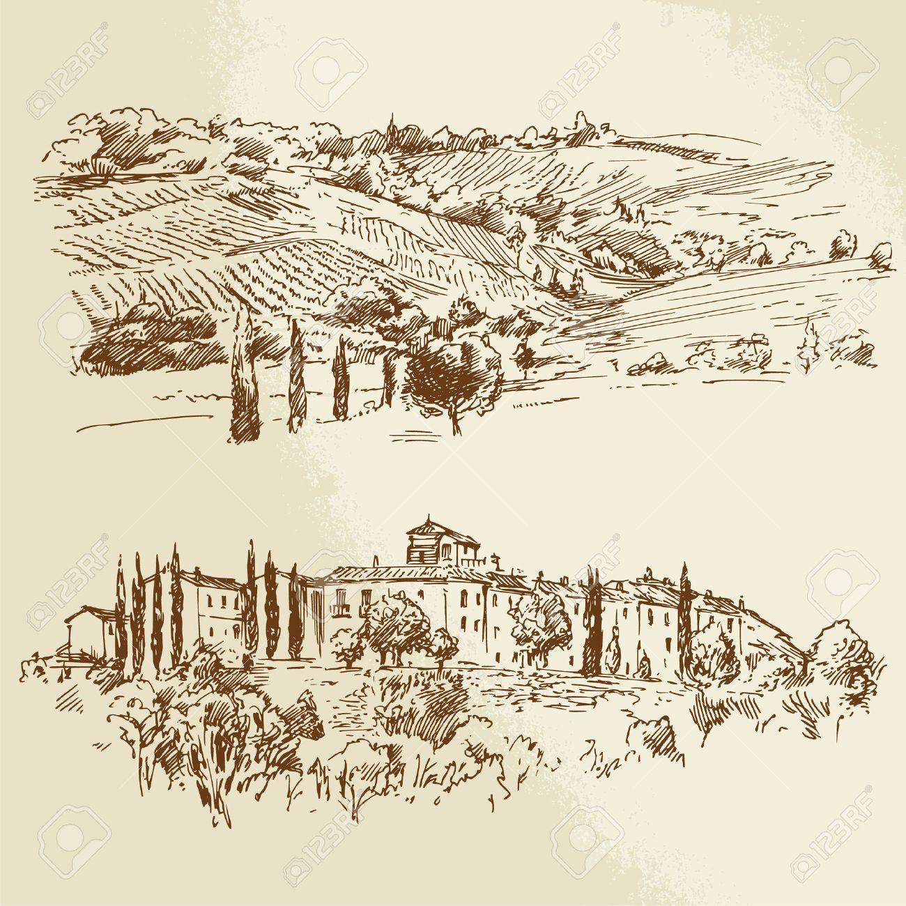 vineyard, romantic landscape - hand drawn illustration Standard-Bild - 25307611