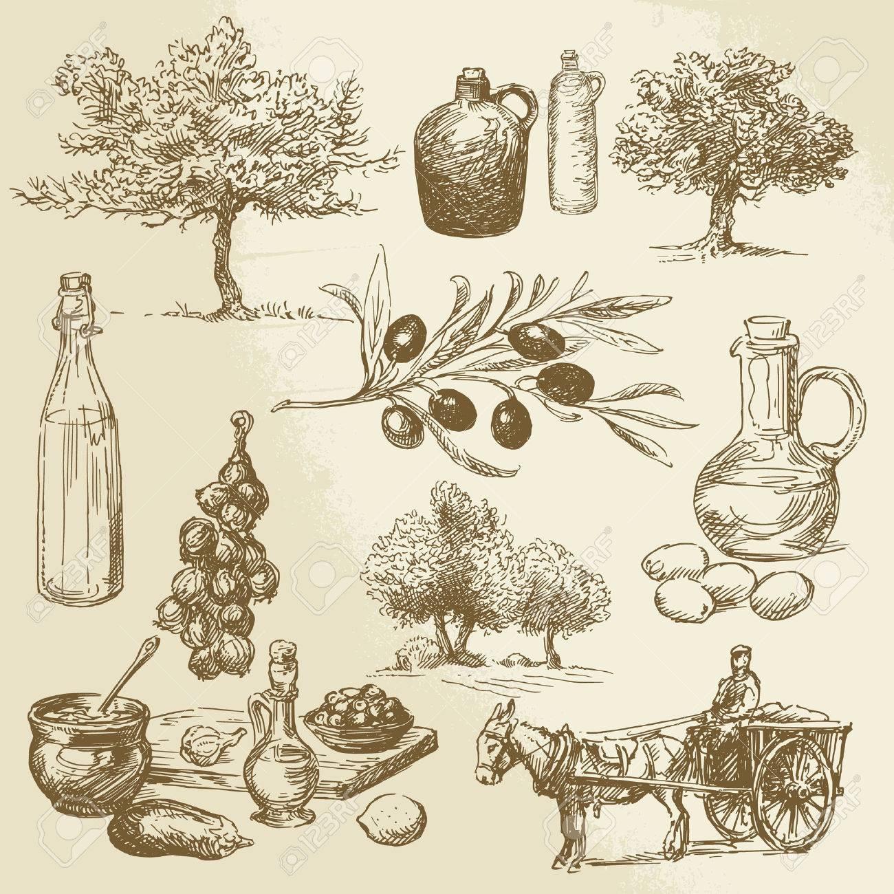 Ernte-und Oliven Produkt - Hand gezeichnete Sammlung Standard-Bild - 26590664