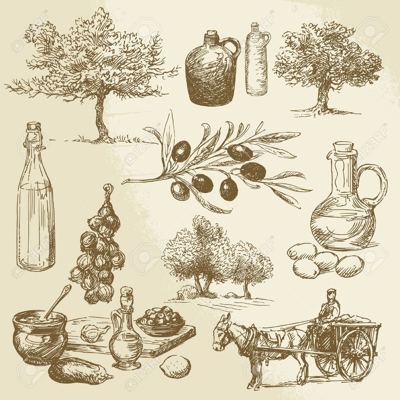 harvest and olive product - hand drawn collection Standard-Bild - 26590664